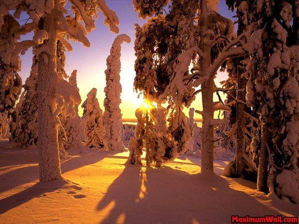 La neige en montagne ... 5f0cbb36